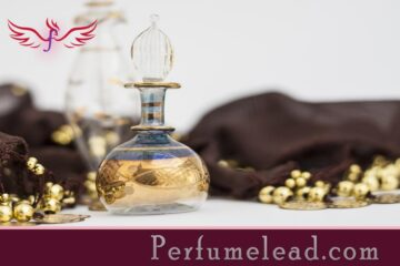 A Beginner's Guide To Perfume Types-perfumelead