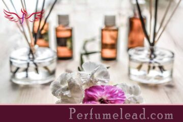 A Man's Guide to Fragrance-perfumelead