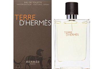 Hermes Terre D'Hermes Eau de Toilette spray for Men