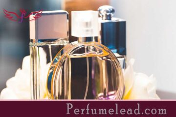 Tips on how to Select and Purchase The Good Perfume -perfumelead