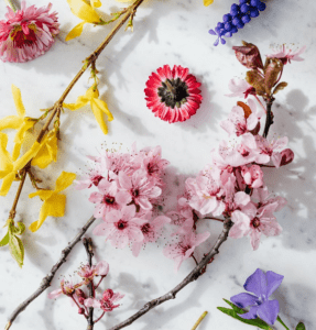 Scents That Will Boost Your Productive